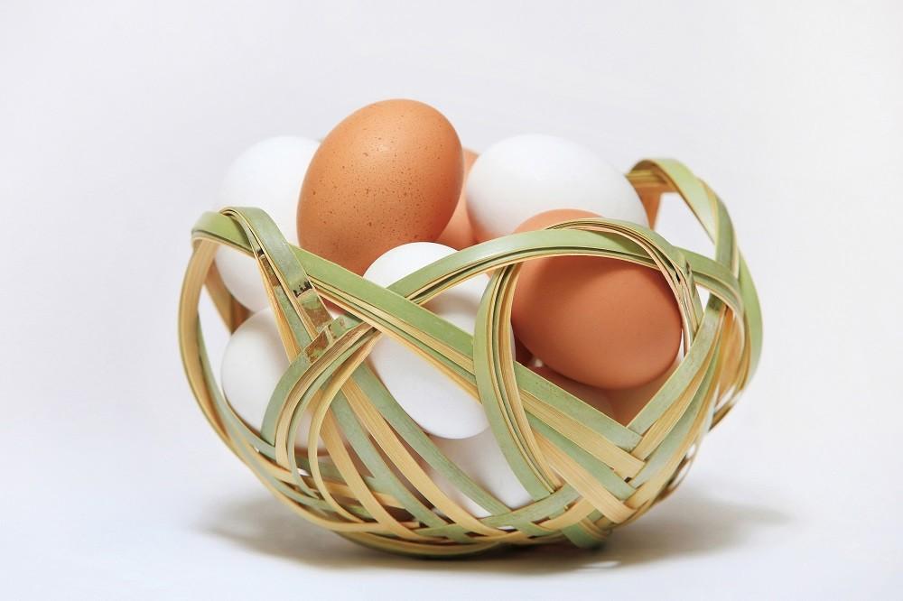 卵は付属していません。