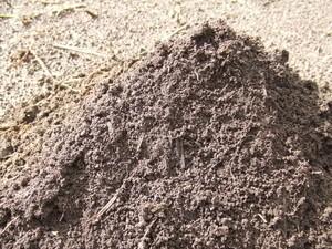 三瓶の多くは火山灰からなり、ふかふかな黒土で水はけがよいのが特徴。