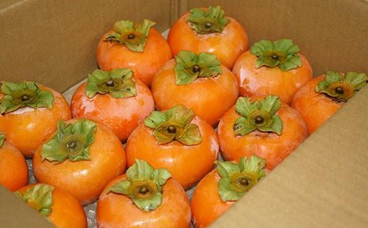 7.5kgもの大容量!よく実った柿をお手元にお届けします