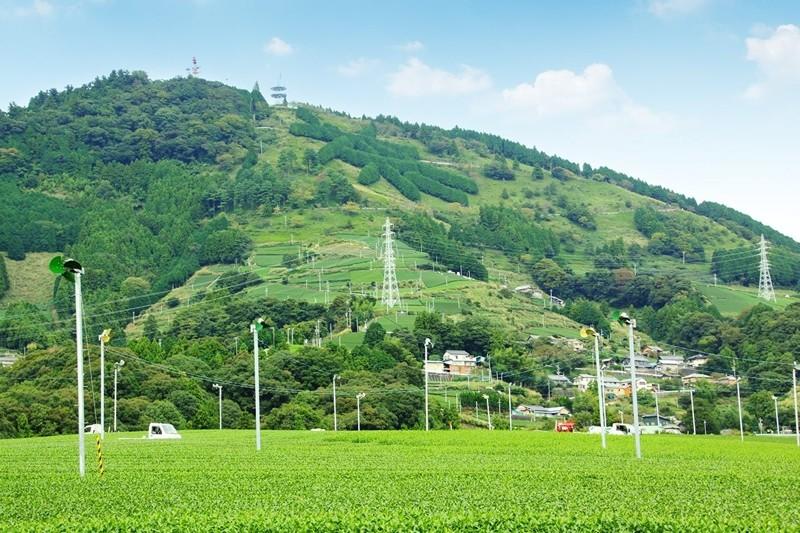 掛川市東山地区「粟ヶ岳」