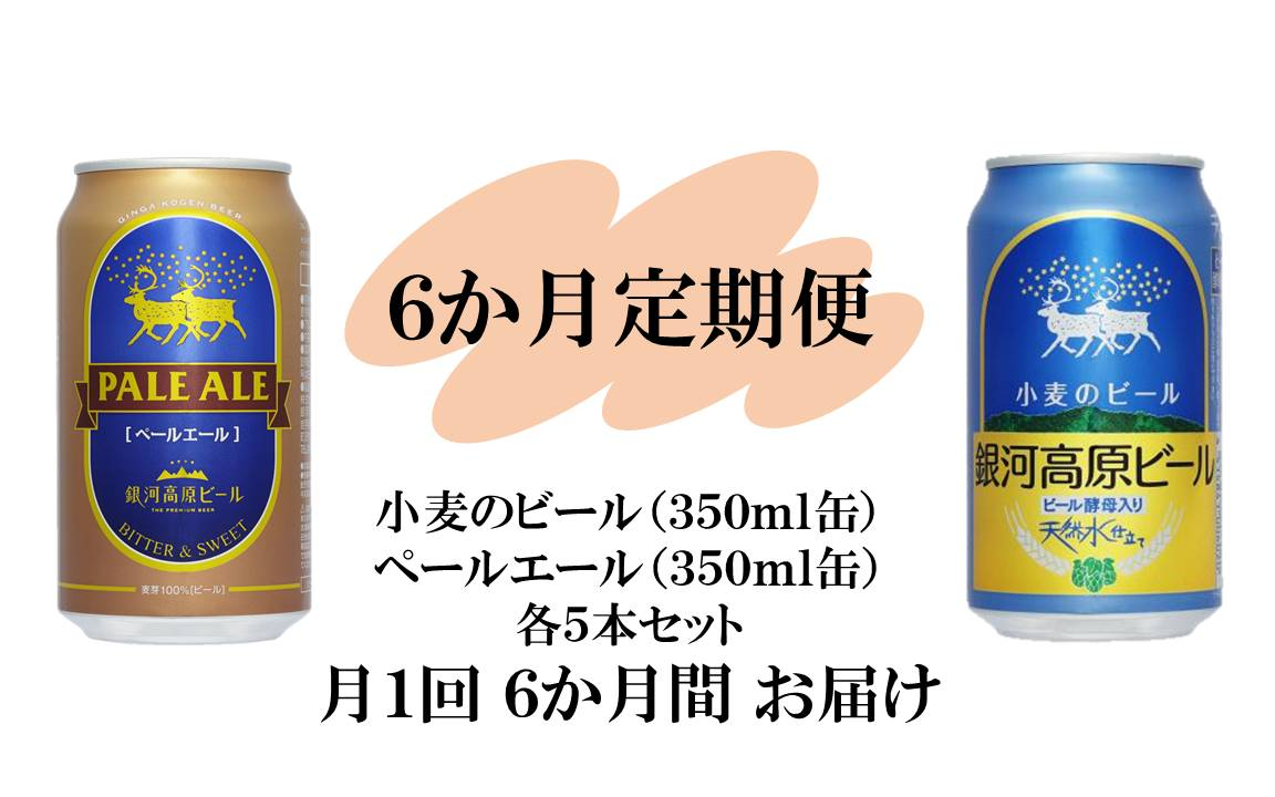 銀河高原ビール 二種のビールセット 6か月 定期便
