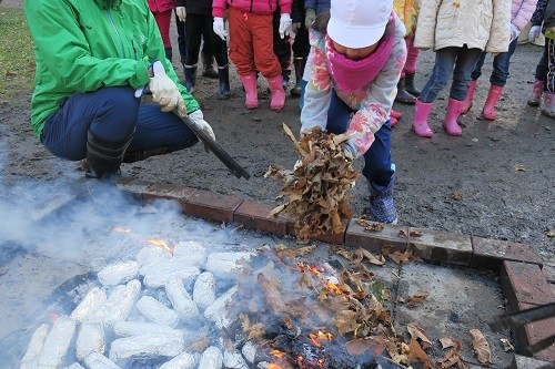 焼き芋にするために落ち葉で火を大きくします。