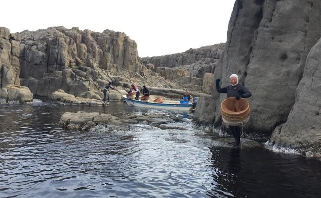 9月 Nans Seaの海女獲りサザエ 約3kg