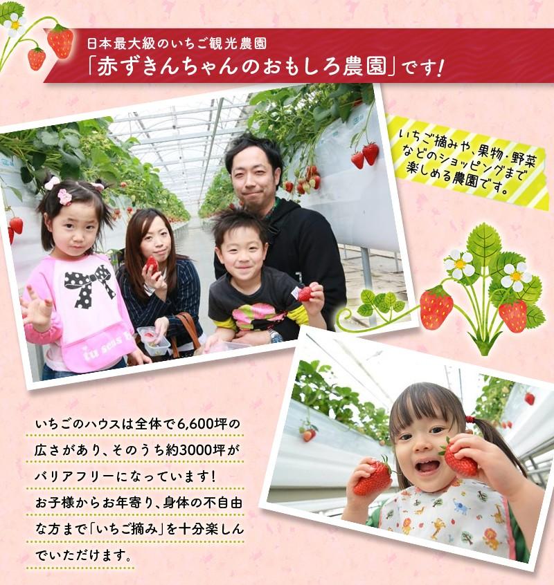静岡の品種「紅ほっぺ」です♪