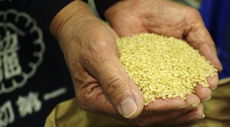 玄米のままでも驚くほど美味いと自慢のお米