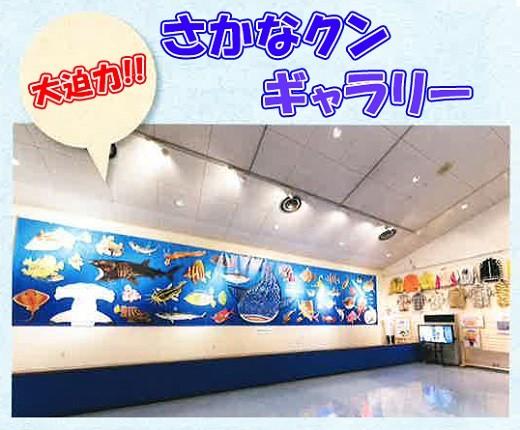 渚の博物館内1階に「さかなクンギャラリー」を開設。