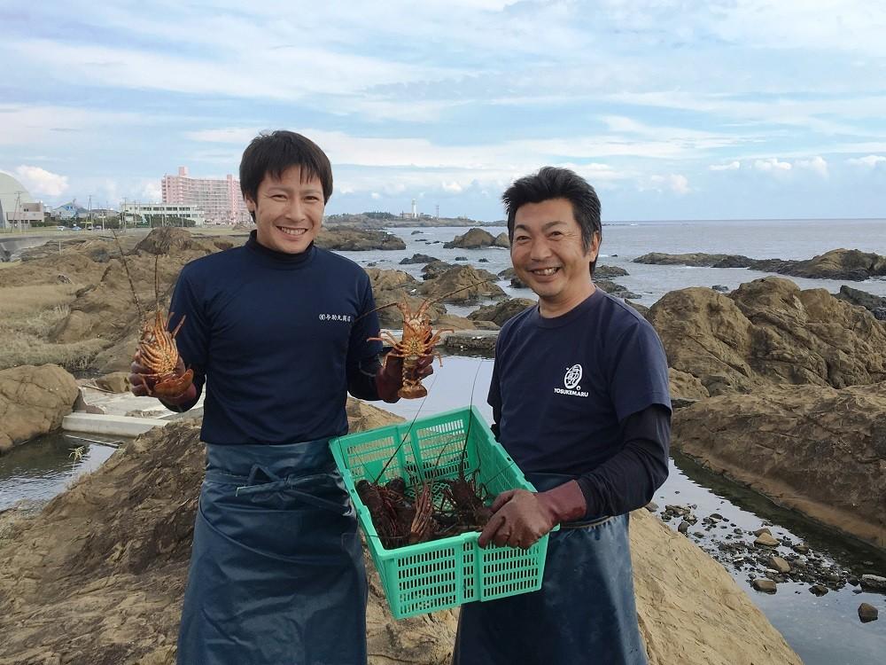 南房総市では8月1日から翌年5月31日までが伊勢海老の漁期です