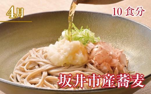 2019年4月 坂井市産蕎麦 10食