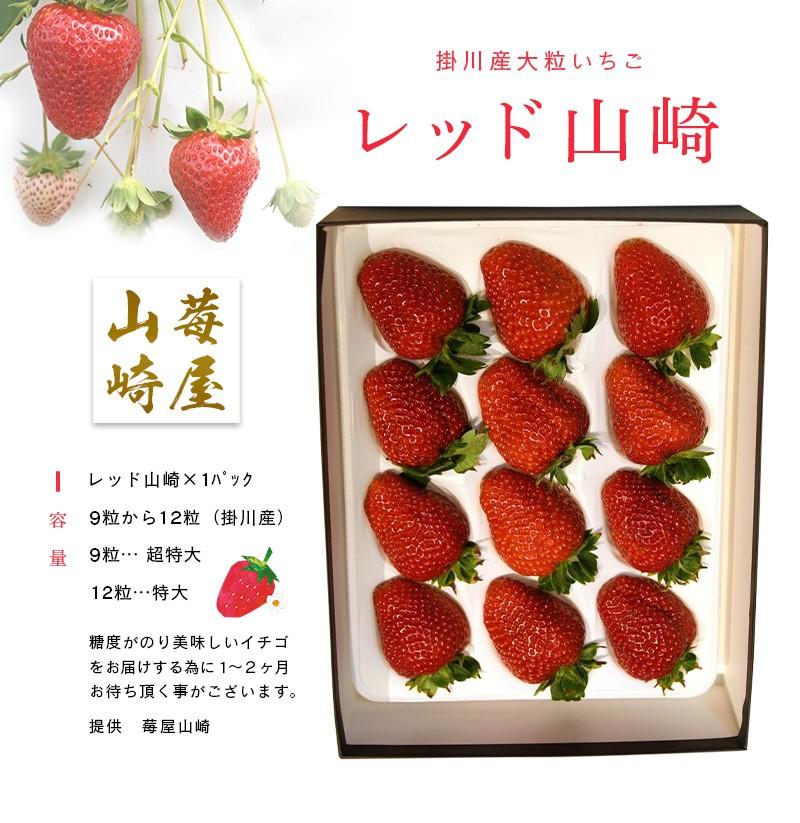 糖度が高く酸味もあるので味は濃厚なイチゴ!「レッド山崎」です♪