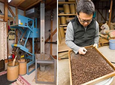 色彩選別機で選別した豆をプロの目でさらに厳選しています。