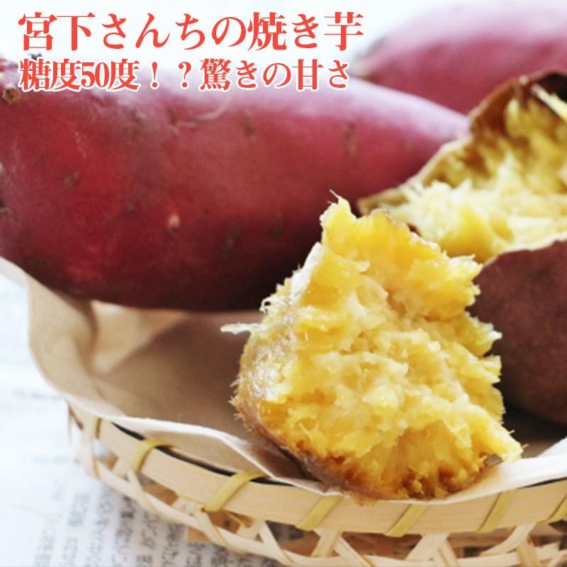A1-2109/宮下さんちの焼き芋 糖度50度!?驚きの甘さ
