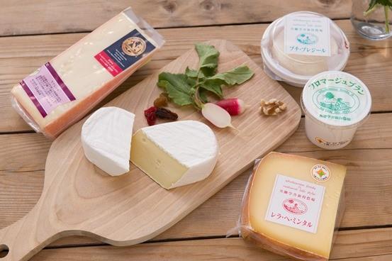 共働学舎チーズ