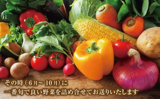 麻梨子の特栽認定野菜