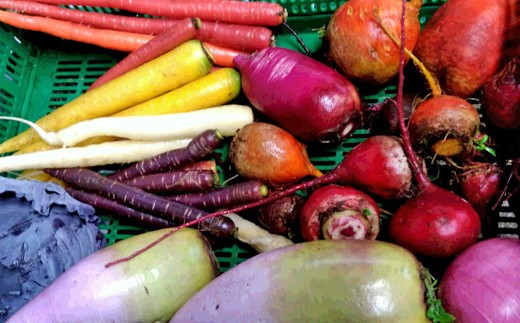 カラフル野菜