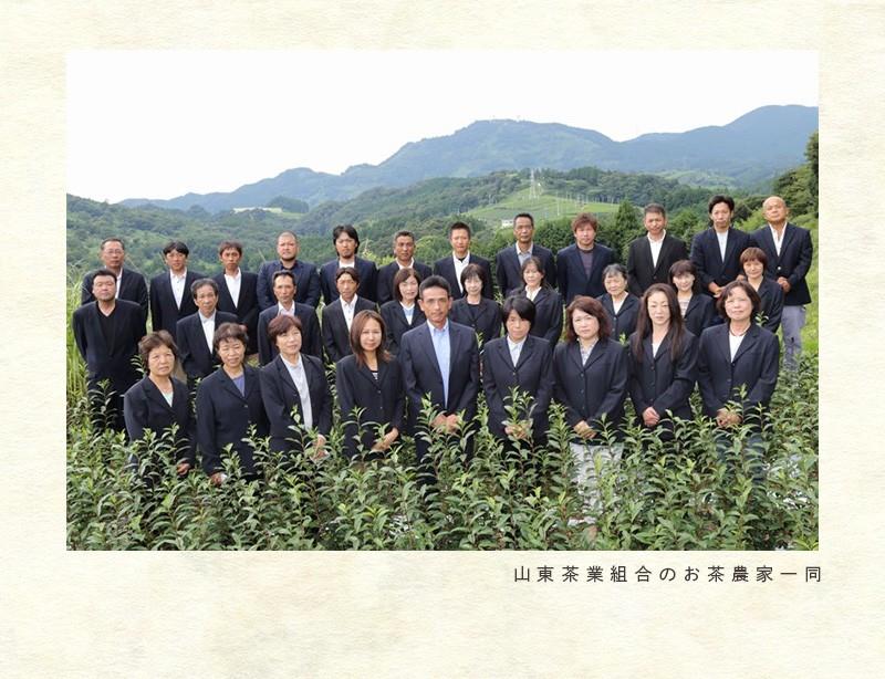 山東茶業組合の茶畑です。山東のお茶は「静岡の茶草場農法」です。