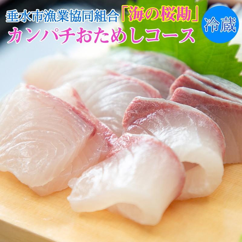 A1-0104/「海の桜勘」おためしコース