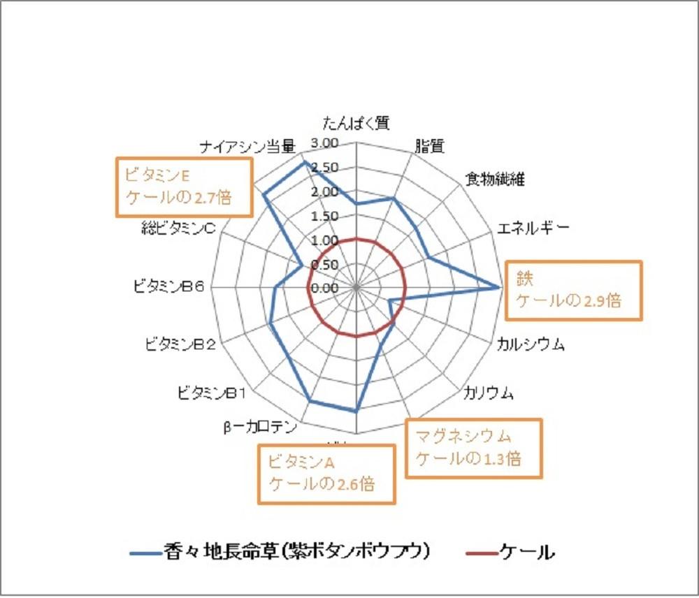 2011.12.28 財団法人日本食品分析センター調べ