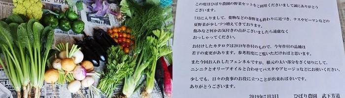 採れ立て新鮮野菜と武下さんからメッセージを添えて