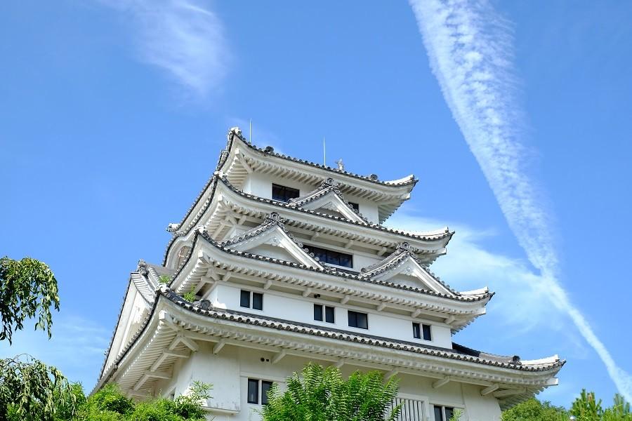 吉野川市のシンボルの一つ「川島城」