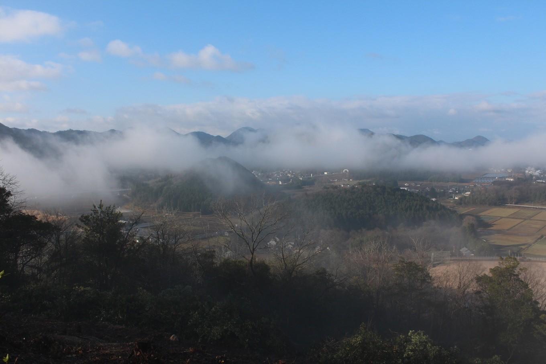 秋の丹波高原に発生する丹波霧が丹波栗を風味豊かにします。
