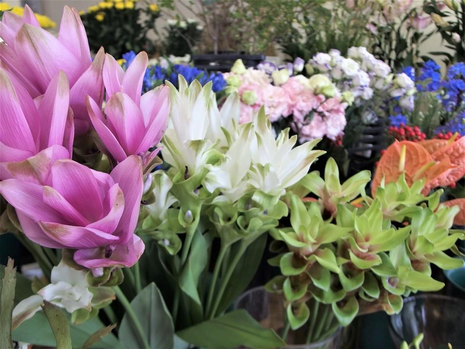 店内には多くのお花がございます