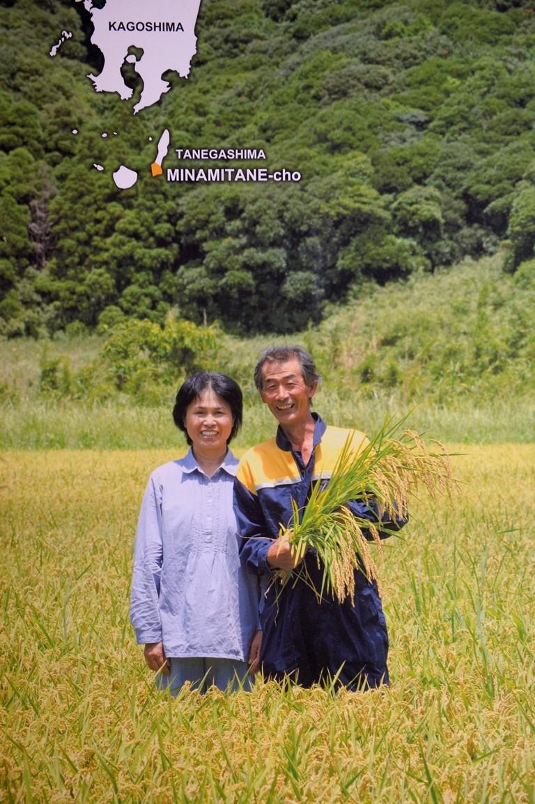 南種子のお米、おいしいよ~