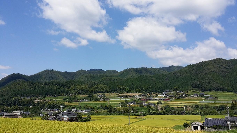 和知栗をはぐくんでいる京丹波町和知地区。