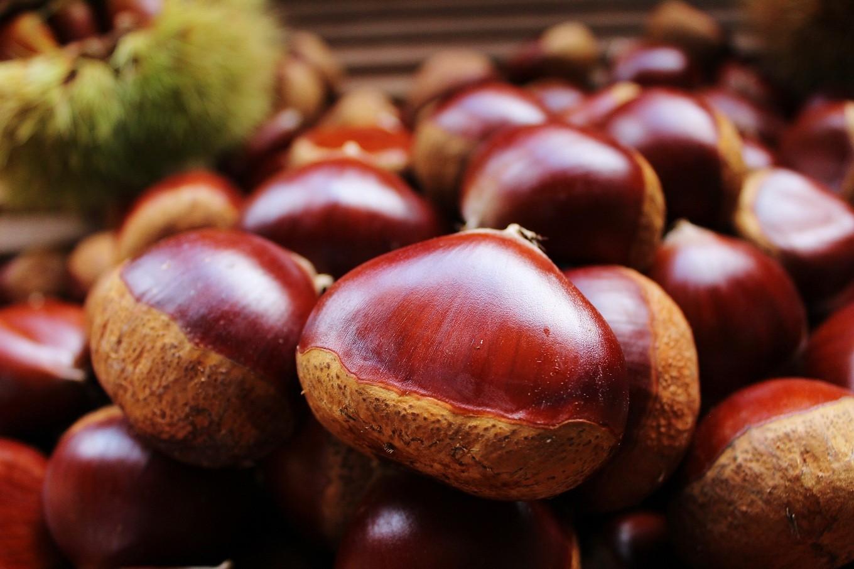 和菓子・洋菓子などの原材料としても丹波くりは重宝されています。