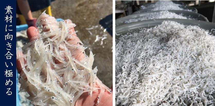 工場から1分の須崎漁港で水揚げされたシラスを10分以内に釜揚げ