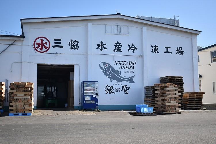 浦河港に隣接する「冷凍工場」で鮮度が保たれたまま加工されます!
