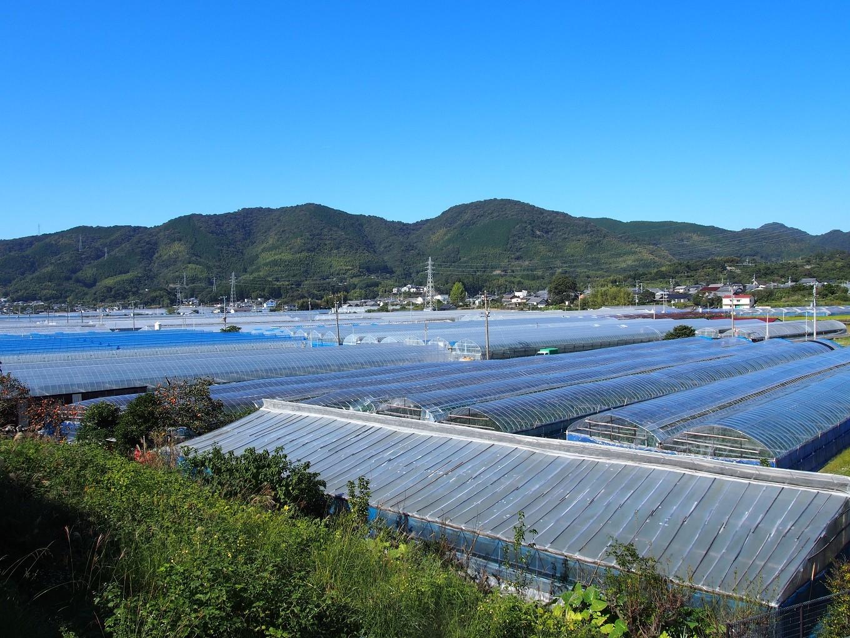 高知県芸西村