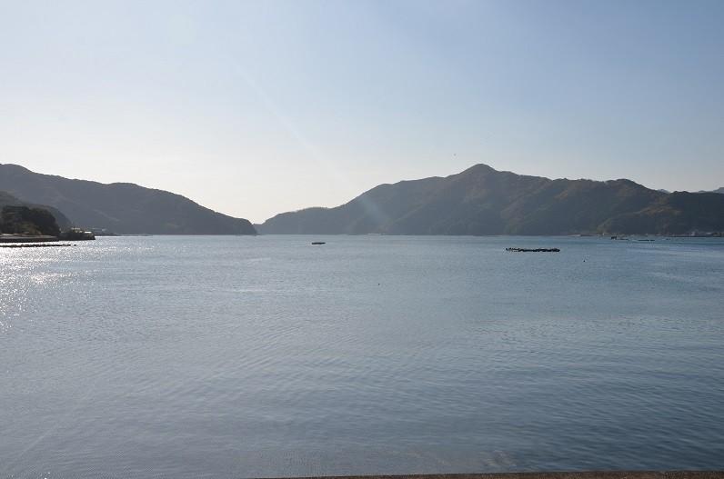 太平洋の温かい海水と瀬戸内海の冷たい海水が混じり合う好漁場です。