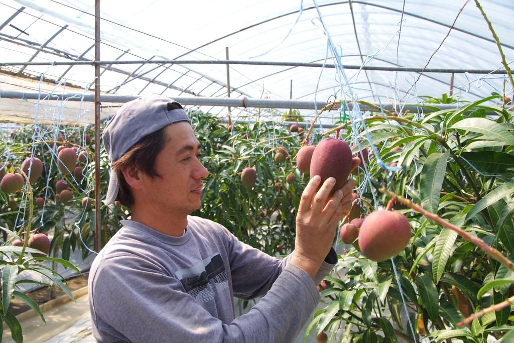 浜田農園の園主、濵田隆介さん