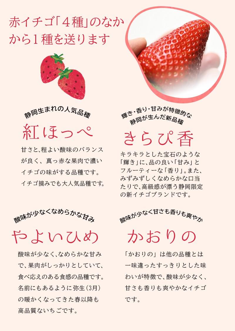 赤のイチゴ「紅ほっぺ」「きらぴ香」「やよいひめ」「かおりの」です♪