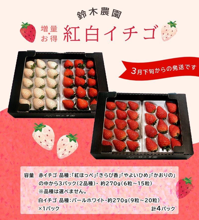 赤は「紅ほっぺ」白は「パールホワイト」の紅白イチゴセットです♪