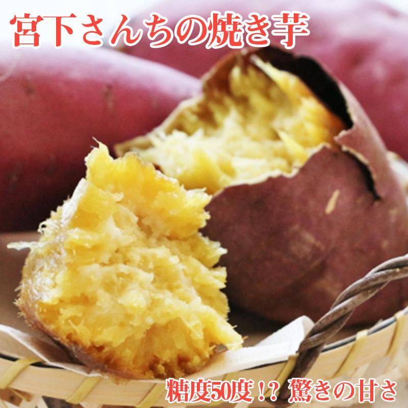 宮下さんちの焼き芋約1.8kg 糖度50度!?驚きの甘さ