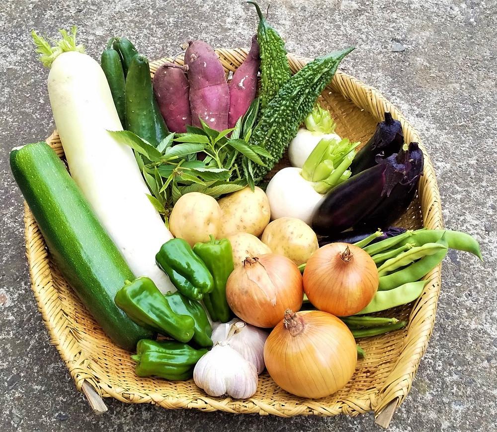 せの畑で収穫された野菜です。どんな野菜が届くかはお楽しみに!