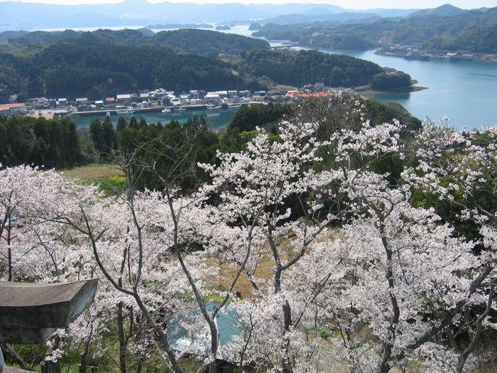 高尾山公園の展望台からの景色