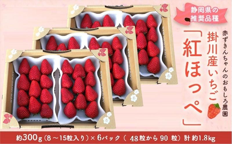 日本最大級のいちご観光農園「赤ずきんちゃんのおもしろ農園」です♪