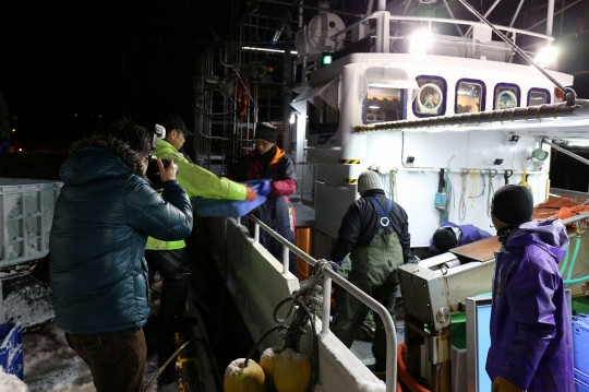 漁獲したエビは船底の水槽で鮮度を保たれ帰港します。