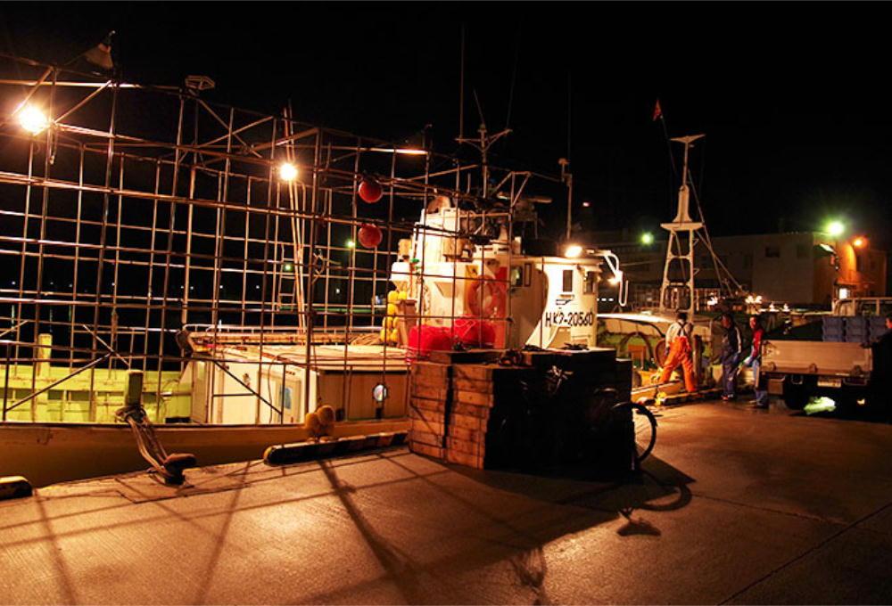深夜に出漁しカゴを海に仕掛け、港にカゴを積みに何度か戻ります。