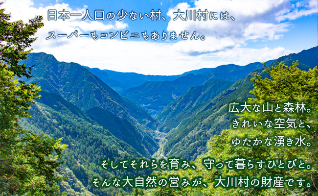 雄大な自然に囲まれた大川村
