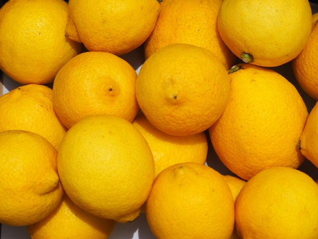 無農薬にこだわった安心・安全なレモン