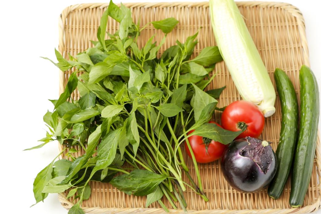 新京野菜「京唐菜」は。栄養満点の夏野菜!