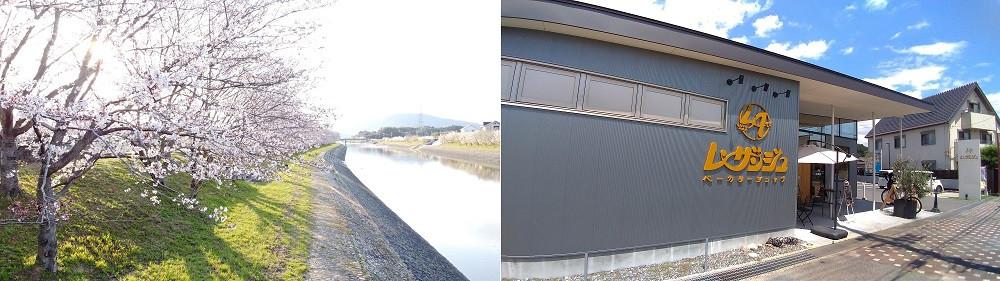 左:田布施川と桜並木 右:平成28年現店舗外観