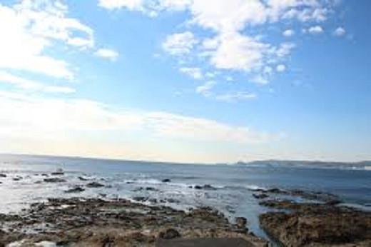 黒潮の恵みをたっぷり受けた鴨川の海
