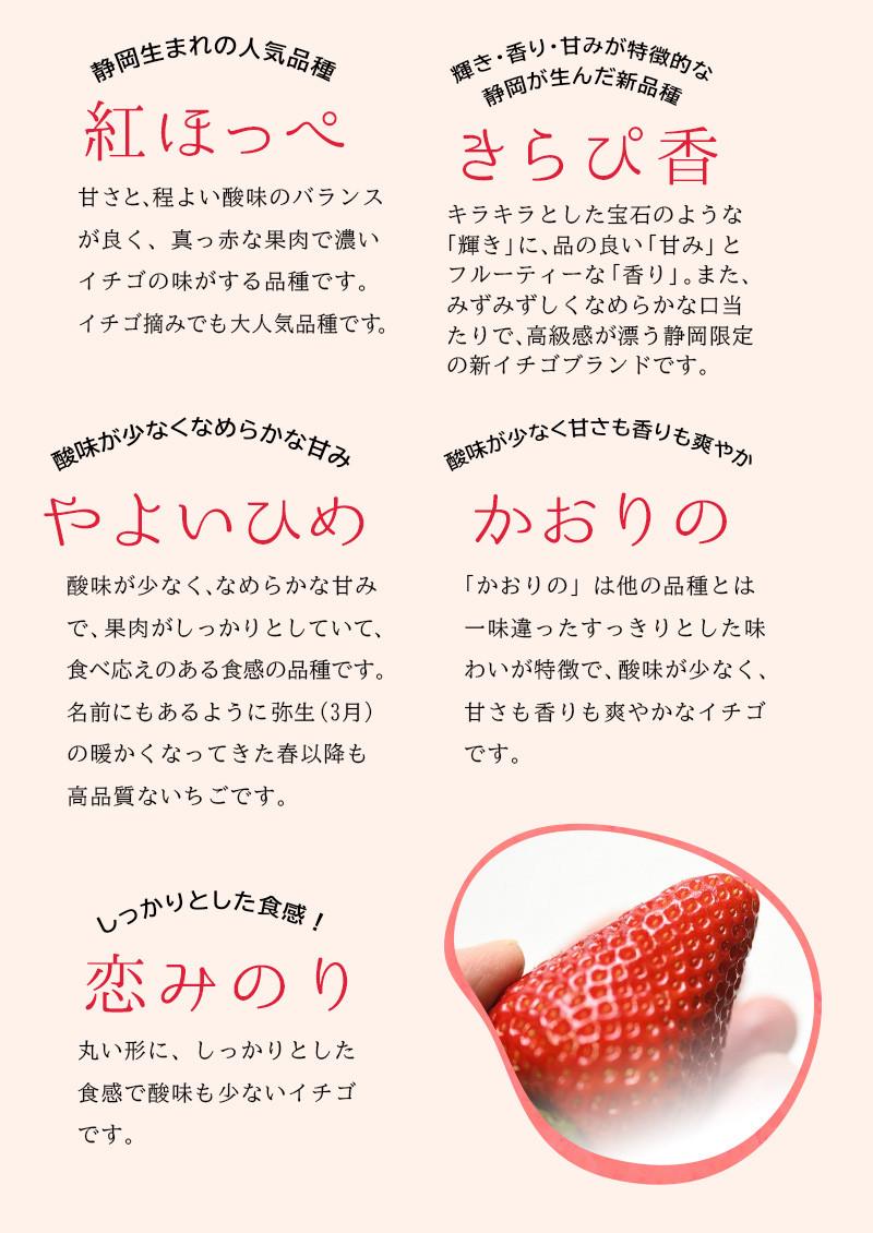 赤イチゴは、紅ほっぺ・きらぴ香・やよいひめ・かおりの・恋みのり、です