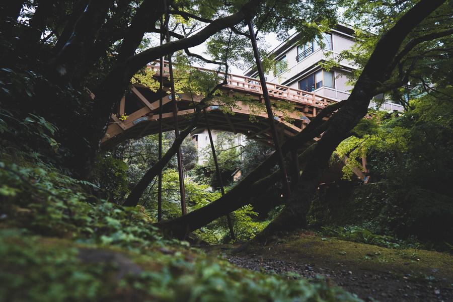 撮影地:こおろぎ橋