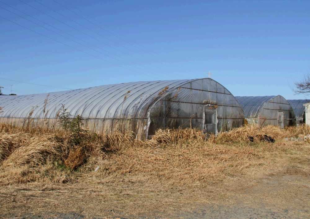 同じ敷地内にあるうなぎの養殖場で育ったうなぎを中心に使っています。