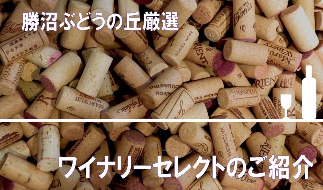 【日本ワイン】甲州市勝沼ぶどうの丘・ワイナリーセレクト